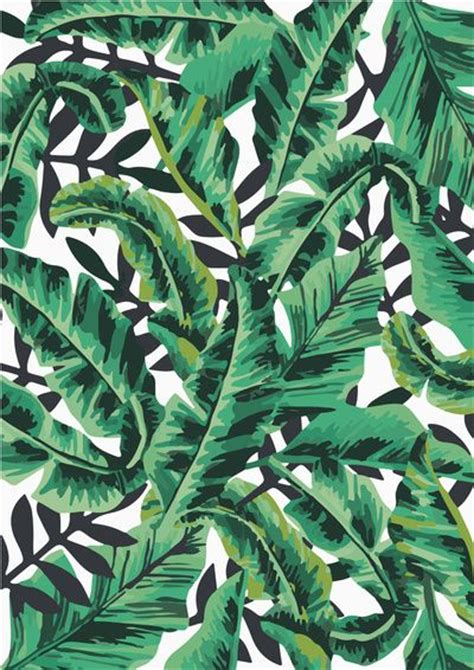 tropical glam banana leaf print art print print leaf