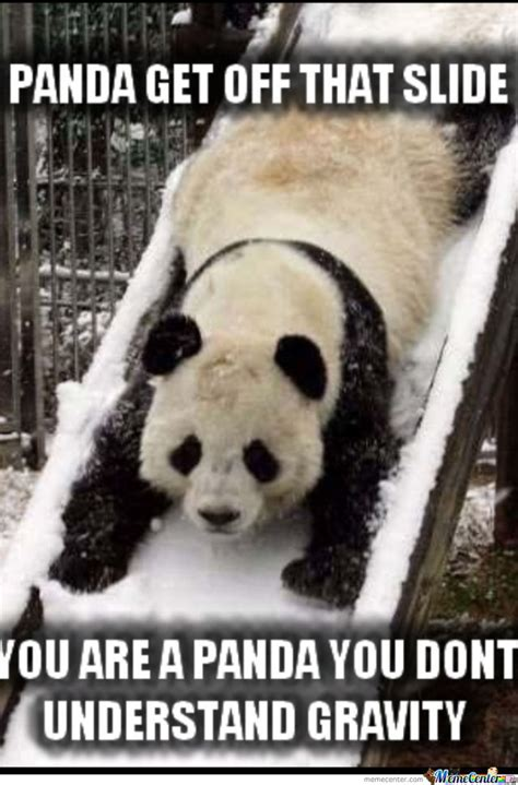 Cute Panda Memes - cute panda by kimmm meme center
