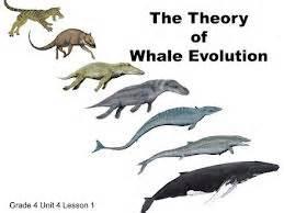 Biology the living environment