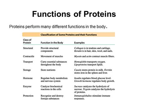 2 protein functions amino acids proteins and enzymes ppt