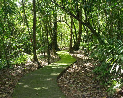la selva la selva frog blog manchester