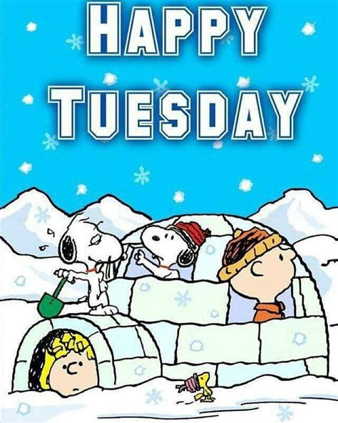 happy tuesday pictures   images  facebook