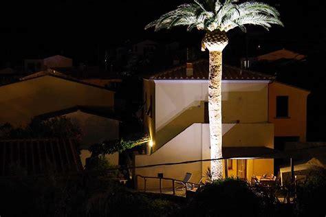 illuminazione alberi illuminazione alberi come illuminare un albero energie