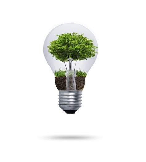 l bulb ecological concept in uhq images elsoar