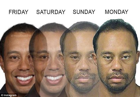 Tiger Woods Memes - tiger woods mugshot gets the meme treatment daily mail
