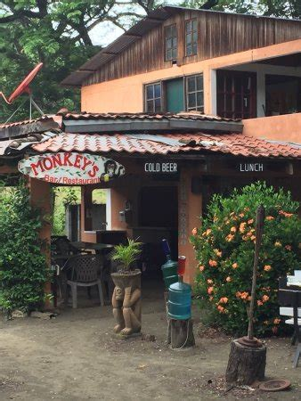 monkey bar with top monkey bar sardinal costa rica top tips before you go