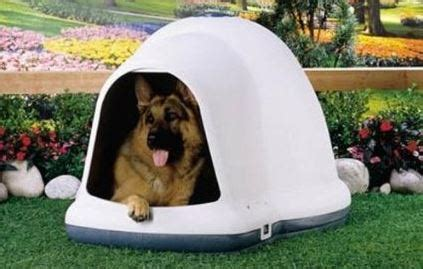 how to keep dog house warm gbhs crate dog house drive intended to help keep dogs warm this winter al com