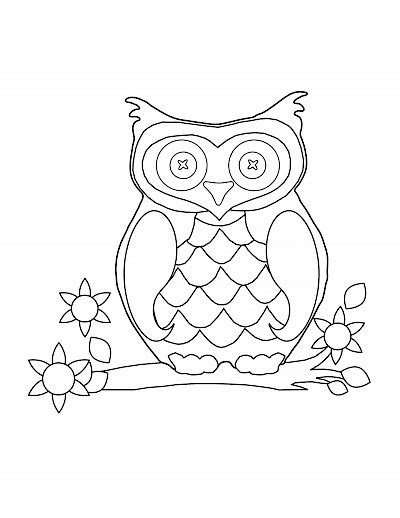 spotted owl coloring page coloring page owl