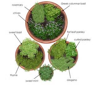 container herb garden plans herb garden in containers bonnie plants