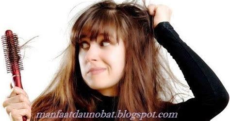 Sho Rambut Bercabang Sho Kerontokan Rambut Sho Green rambut rontok parah cara uh mengatasi rambut rontok parah secara alami dan 10 makanan bantu