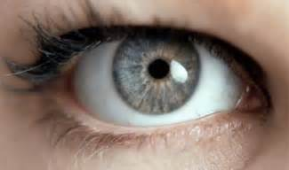 gray eye color beautiful gray wip m z beautiful