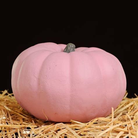pink pumpkin punkins pinterest