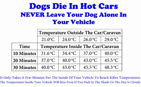 stroke in dogs car temperature chart breeds picture