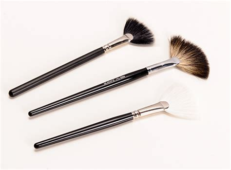 Brush Highlighter must makeup brushes for blush foundation contouring
