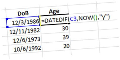 charis alexandra training: excel calculating age from the