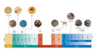 el rincon bago linea tiempo atomo linea de tiempo de las eras de la tierra apexwallpapers com
