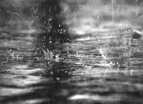 imagenes tiernas de lluvia por qu 233 la lluvia tiene un olor tan particular ciencia uanl