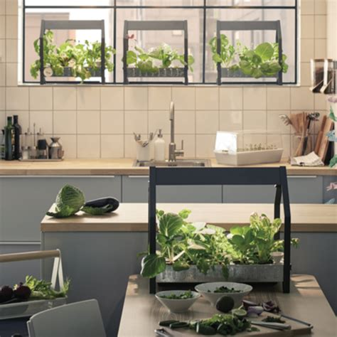 ikea launches hydroponic indoor gardening kit ideal home