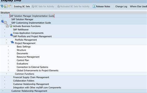 customizing project templates project management in a nutshell for sap solution manager