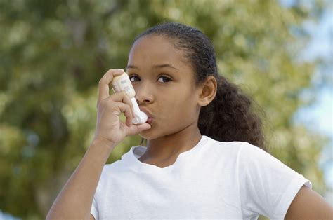 asthma allergens fort wayne allen county department of