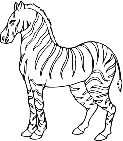 coloring pages categories zebra coloring page free printable coloring pages