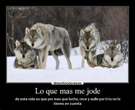 imagenes goticas de lobos imagenes de lobos goticos imagui