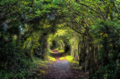pathway pictures witchcraft and literature a magical pathway to my goal