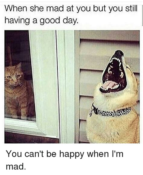 Im Mad At You Meme - when she mad at you but you still having a good day you