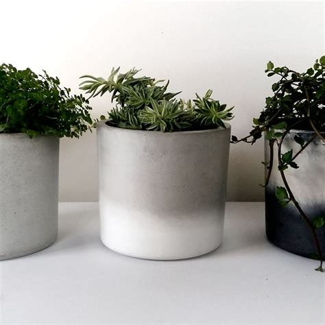 vasi fioriere fioriere cemento vasi fioriere in cemento