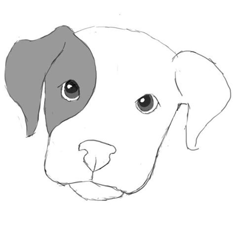 drawing of a puppy 48 best images about pancake on chihuahuas diy toys and puppys