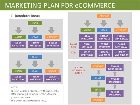ecommerce business plan template web marketing ltd simple editor for mac