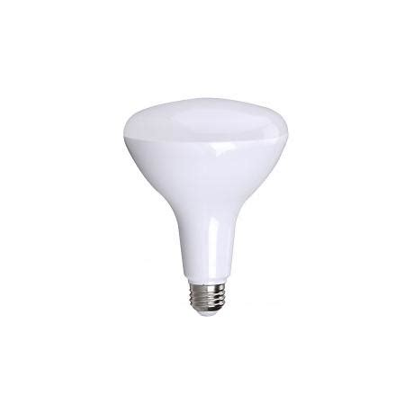 Bioluz 13 Watt Br40 Frosted Led Light Bulb 15h79 13 Watt Led Light Bulbs