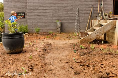 how to set up vegetable garden vegetable garden set up