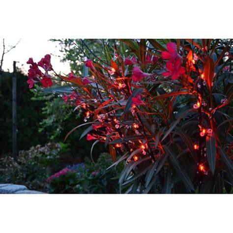 illuminazioni di natale per esterno di natale da esterno rami decorativi natalizi