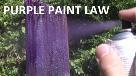 purple paint law wgns is your source for murfreesboro news and rutherford