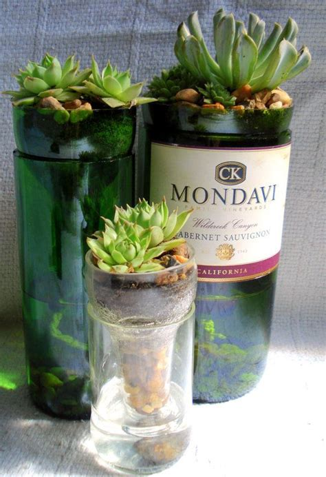 Diy Wine Bottle Planter by 25 Best Ideas About Wine Bottle Planter On