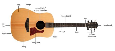 best guitar parts guitar anatomy and design