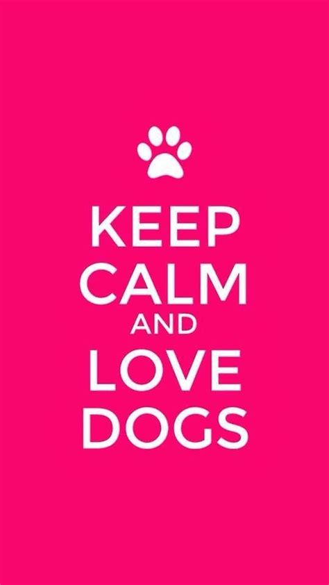 keep calm and puppies 48 keep calm and dogs 53 inspiring quotes to help you