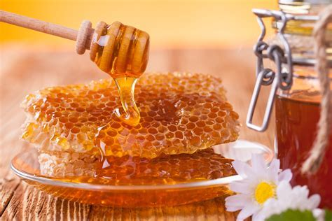 Wallpaper Honey Honeycomb Flowers Camomiles Food Plate