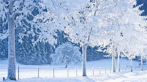 snow images snow images wallpaper high definition high quality