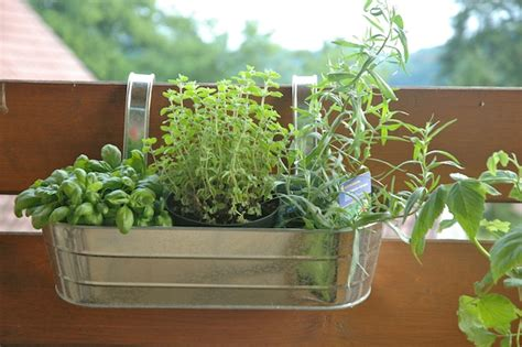 1000 images about growing herbs in the garden on how to make a balcony herb garden complete tutorial 8