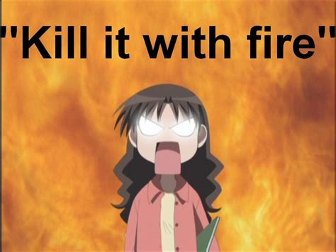 Kill It With Fire Meme - image 2345 kill it with fire know your meme