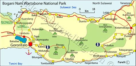 taman nasional bogani nani wartabone sulawesi