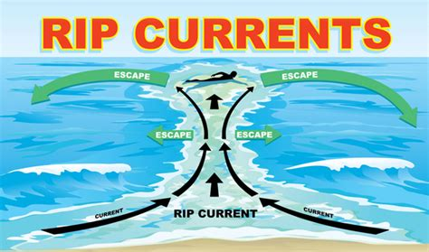 rip diagram rip current 101 the grip of the rip weatherbug