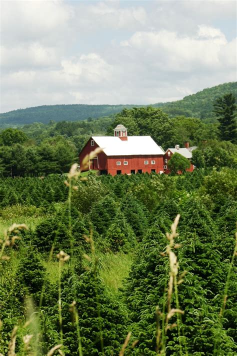 79 best images about state of vermont on pinterest