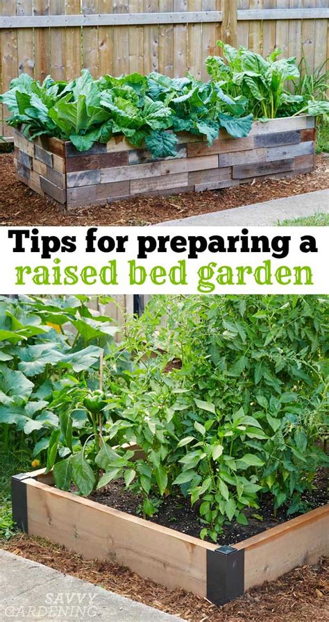 preparing a vegetable garden bed 6 things to think about before preparing a raised bed garden