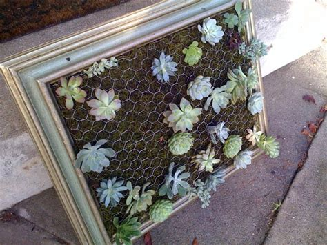 Cool Diy Green Living Wall Projects For Your Home How To Make A Succulent Wall Garden