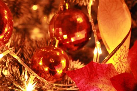 holiday season background  stock photo public domain pictures
