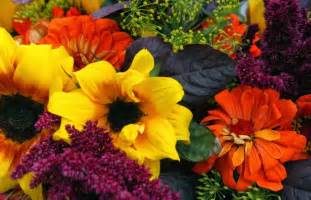 planting flowers for fall and winter