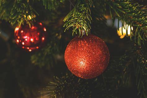 christmas tree drop off program starts boxing day 660 news